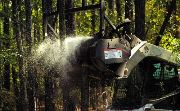 Forestry Cutter Attachment